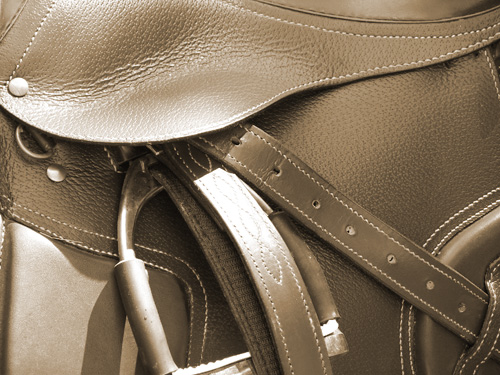 Selle Cheval Occasion