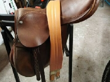 selle cheval penwood cuir marron